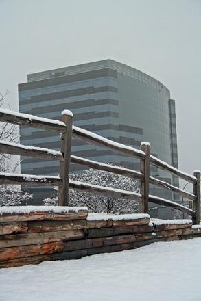 NLOP Winter-2